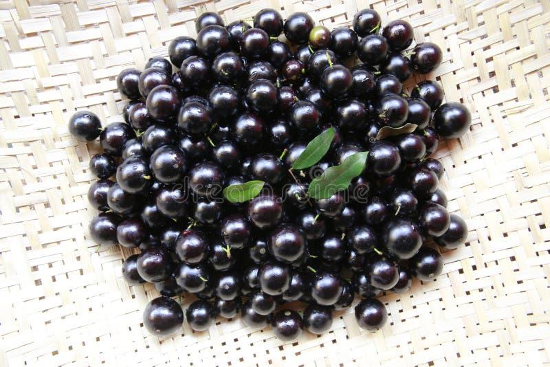 Φρούτα Jaboticaba στοκ φωτογραφία με δικαίωμα ελεύθερης χρήσης