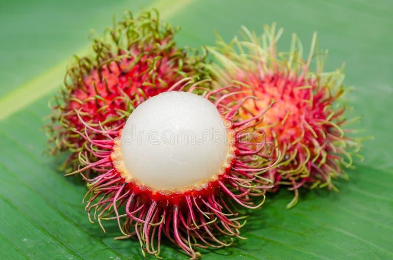 Φρούτα Rambutan στοκ φωτογραφίες με δικαίωμα ελεύθερης χρήσης