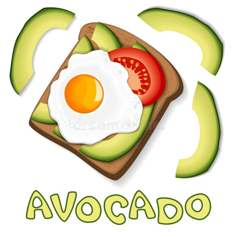Φρυγανιά με το αβοκάντο και το τηγανισμένο αυγό, με τις φέτες της ντομάτας στο ψωμί τρόφιμα σιτηρεσίου υγιή Στοιχείο για το σχέδι απεικόνιση αποθεμάτων