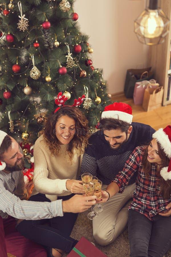 Φρυγανιά Χριστουγέννων στοκ φωτογραφία με δικαίωμα ελεύθερης χρήσης