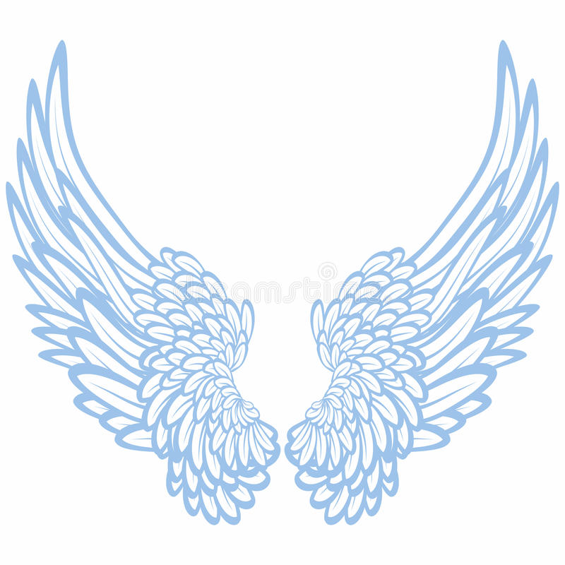 φτερά ζευγαριού διανυσματική απεικόνιση