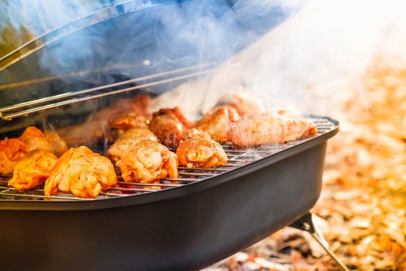 Φτερά κοτόπουλου σχαρών που ψήνουν την πυρκαγιά, πικ-νίκ άνθρακα στη σχάρα στοκ φωτογραφία με δικαίωμα ελεύθερης χρήσης