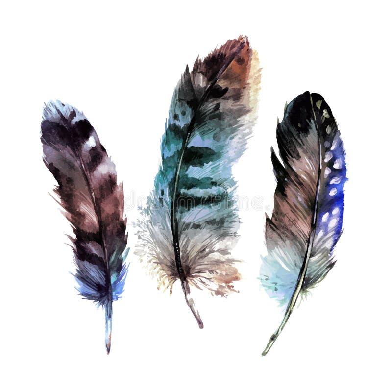 Φτερά Watercolor καθορισμένα απεικόνιση αποθεμάτων