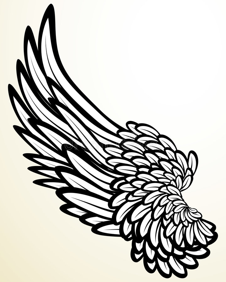 φτερό διανυσματική απεικόνιση
