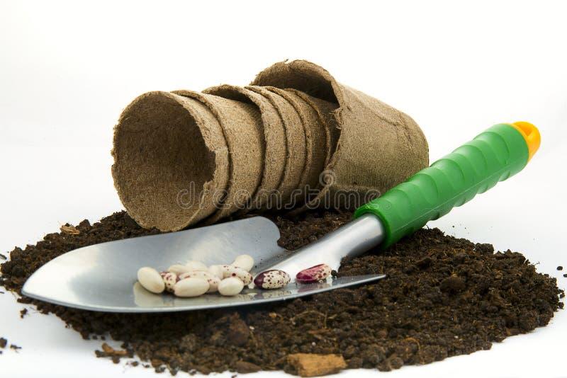 Φτυάρι κήπων με τους σπόρους φασολιών και τα δοχεία τύρφης στο θρεπτικό χώμα τύρφης στοκ εικόνα με δικαίωμα ελεύθερης χρήσης