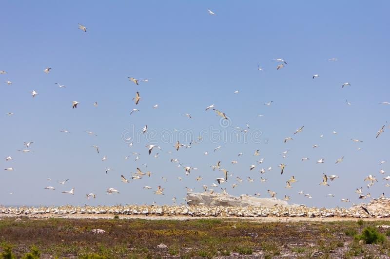 Φτωχό νεφελώδες τοπίο στοκ φωτογραφία