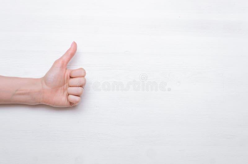 φυλλομετρεί επάνω στοκ φωτογραφία με δικαίωμα ελεύθερης χρήσης