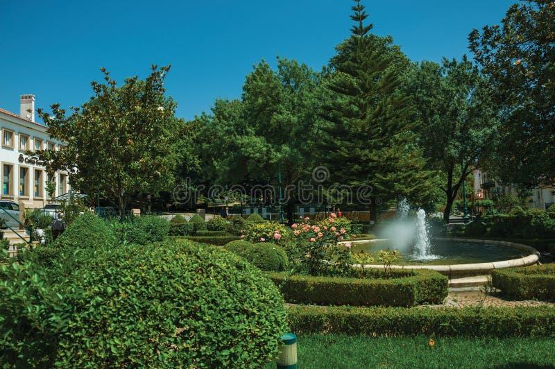 Φυλλώδεις φράκτης και οι Μπους σε έναν ξύλινο κήπο με την πηγή στοκ φωτογραφίες