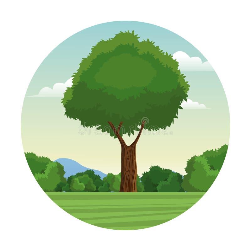 Φυλλώδες δασικό γραμματόσημο τοπίων δέντρων διανυσματική απεικόνιση