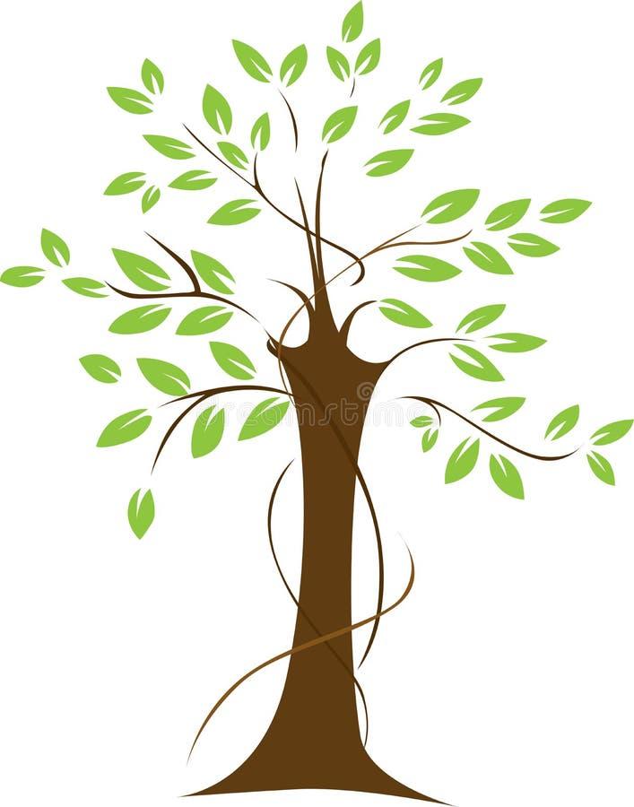 Φυλλώδες πράσινο δέντρο απεικόνιση αποθεμάτων