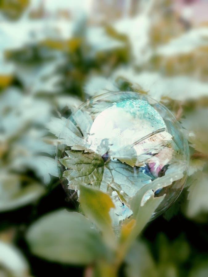 Φυσαλίδα σαπουνιών στοκ φωτογραφίες