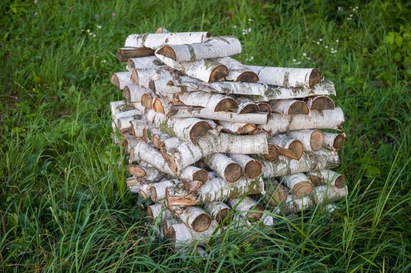 Φυσικά καύσιμα Τα ραβδιά σημύδων είναι στερεά ξύλινα καύσιμα στην επαρχία στοκ φωτογραφίες με δικαίωμα ελεύθερης χρήσης