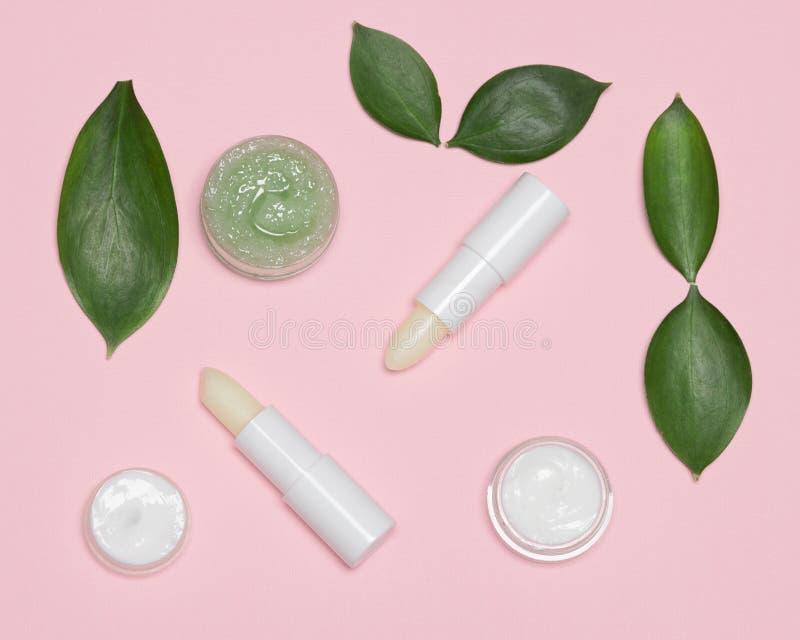 Φυσικά προϊόντα φροντίδας χειλικού δέρματος με τα πράσινα φύλλα στοκ φωτογραφία με δικαίωμα ελεύθερης χρήσης