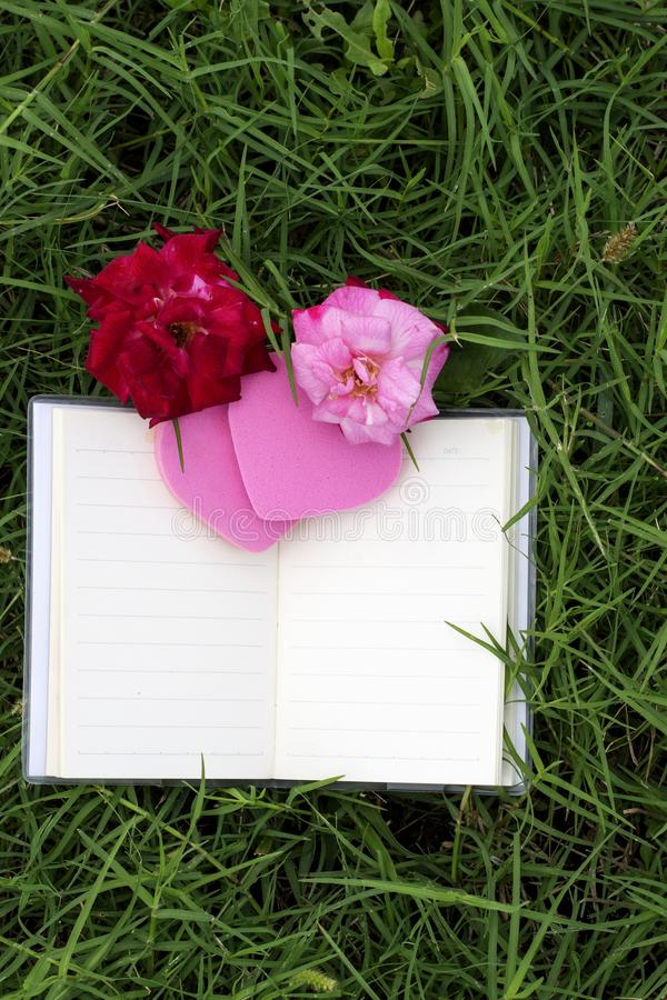 Φυσικά υπόβαθρα και βιβλία για τα ρητά με τα τριαντάφυλλα, καρδιές, κόκκινες κορδέλλες, έννοιες ημέρας του βαλεντίνου στοκ εικόνες