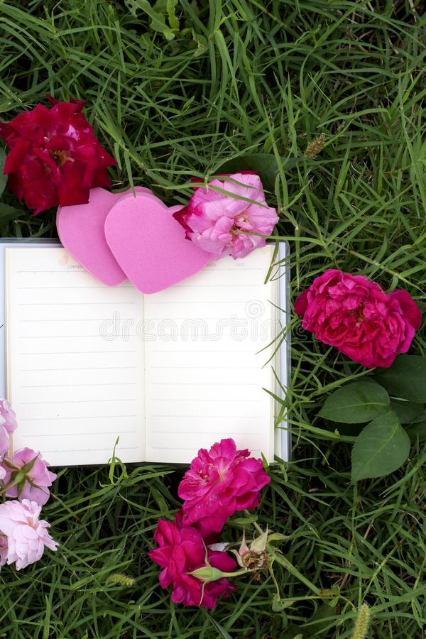Φυσικά υπόβαθρα και βιβλία για τα ρητά με τα τριαντάφυλλα, καρδιές, κόκκινες κορδέλλες, έννοιες ημέρας του βαλεντίνου στοκ εικόνες με δικαίωμα ελεύθερης χρήσης