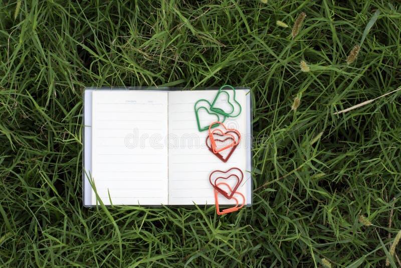 Φυσικά υπόβαθρα και βιβλία για τα ρητά με τα τριαντάφυλλα, καρδιές, κόκκινες κορδέλλες, έννοιες ημέρας του βαλεντίνου στοκ φωτογραφίες με δικαίωμα ελεύθερης χρήσης