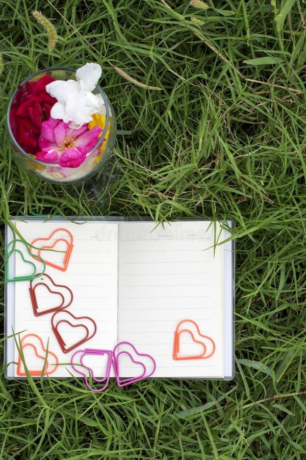 Φυσικά υπόβαθρα και βιβλία για τα ρητά με τα τριαντάφυλλα, καρδιές, κόκκινες κορδέλλες, έννοιες ημέρας του βαλεντίνου στοκ φωτογραφία με δικαίωμα ελεύθερης χρήσης