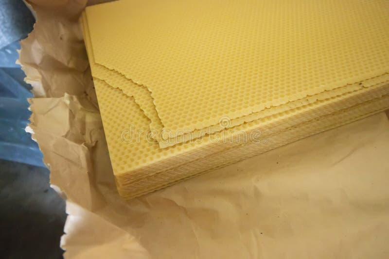 Φυσικά φύλλα μελισσοκηρού στοκ εικόνα με δικαίωμα ελεύθερης χρήσης