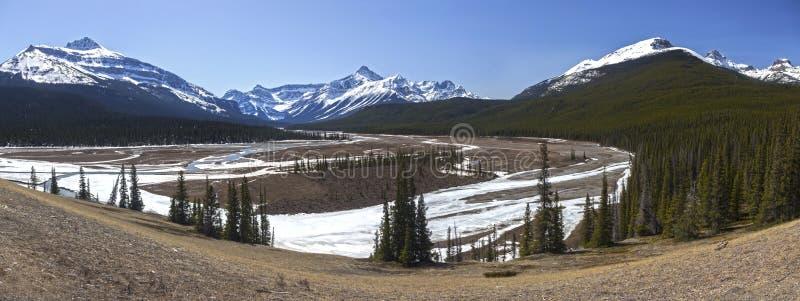 Φυσικά χιονοσκεπή καναδικά δύσκολα βουνά ποταμών Howse τοπίων άνοιξης ευρέα πανοραμικά στοκ εικόνες