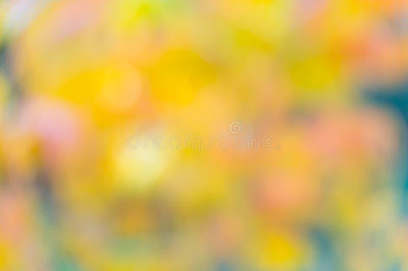 Φυσικά χρώματα Φόντο φθινοπωρινών δέντρων Νεφελώδη φθινοπωρινά κίτρινα και πορτοκαλί φύλλα Όμορφο φθινοπωρινό φόντο στοκ εικόνες με δικαίωμα ελεύθερης χρήσης