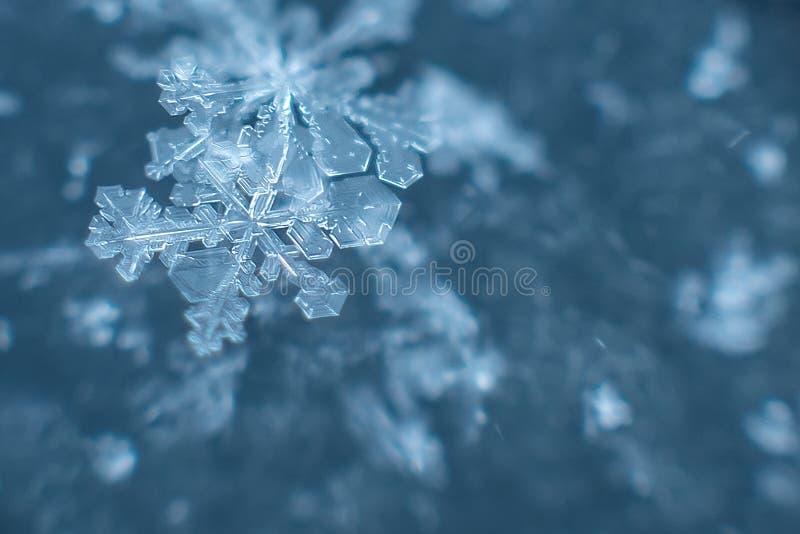 φυσικά snowflakes στο χιόνι, πραγματικά snowflakes φωτογραφιών στοκ εικόνες