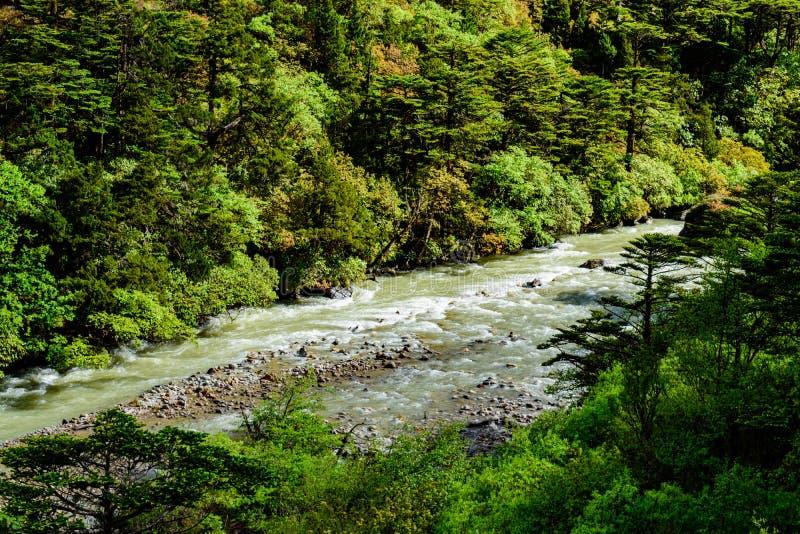 Φυσική άποψη ενός ποταμού στο βόρειο Sikkim, Ινδία στοκ φωτογραφίες