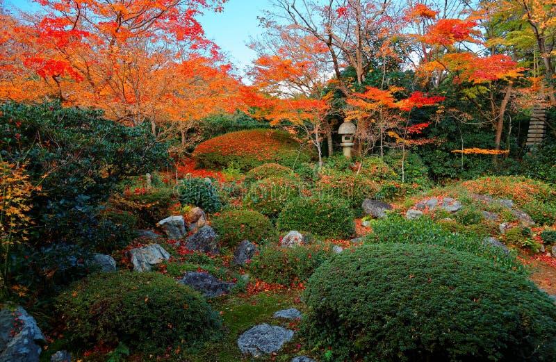 Φυσική άποψη ενός φαναριού πετρών κάτω από τα φλογερά δέντρα σφενδάμνου στον όμορφο κήπο Genkoan στοκ εικόνες
