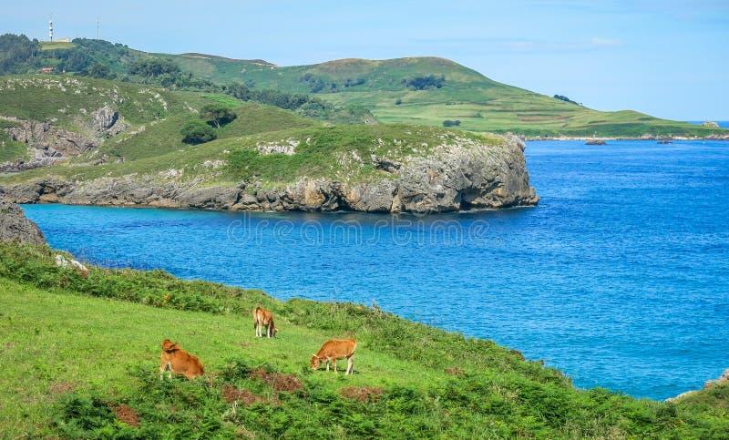 Φυσική άποψη κοντά Playa de Troenzo, Celorio, αστουρίες, βόρεια Ισπανία στοκ εικόνα με δικαίωμα ελεύθερης χρήσης