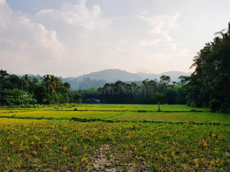 Φυσική άποψη του αγροτικού τοπίου στοκ εικόνες