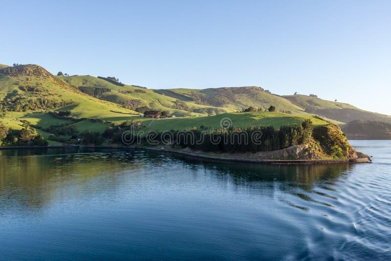 Φυσική άποψη του λιμανιού Otago, Dunedin στοκ φωτογραφία