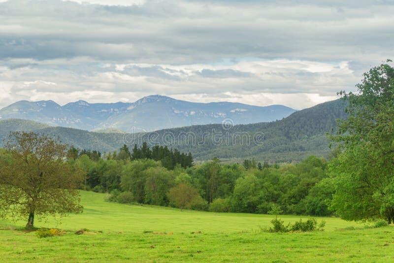 Φυσική άποψη του τομέα, των δέντρων και των λόφων χλόης κάτω από το νεφελώδη ουρανό στην Καταλωνία, Ισπανία στοκ εικόνες με δικαίωμα ελεύθερης χρήσης