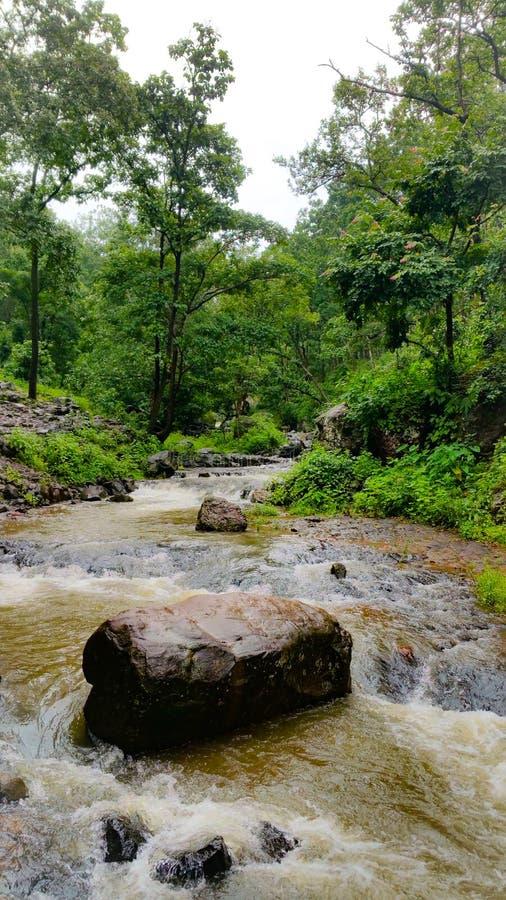 Φυσική άποψη των ροών ποταμών narmada μέσω των άγρια περιοχών στοκ φωτογραφίες με δικαίωμα ελεύθερης χρήσης