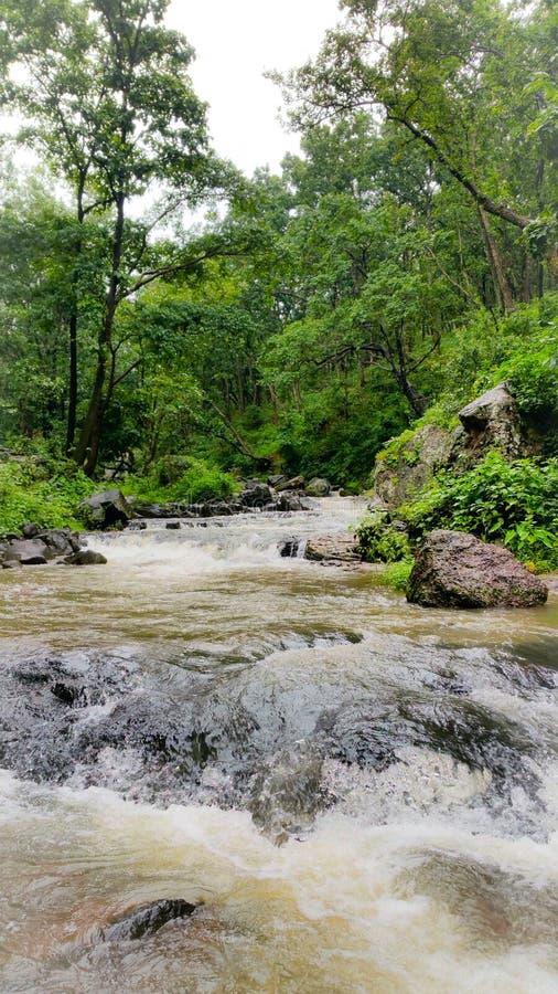 Φυσική άποψη των ροών ποταμών narmada μέσω των άγρια περιοχών στοκ εικόνα με δικαίωμα ελεύθερης χρήσης