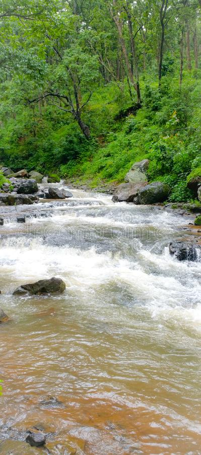 Φυσική άποψη των ροών ποταμών Narmada μέσω του δάσους στην Ινδία στοκ φωτογραφίες με δικαίωμα ελεύθερης χρήσης