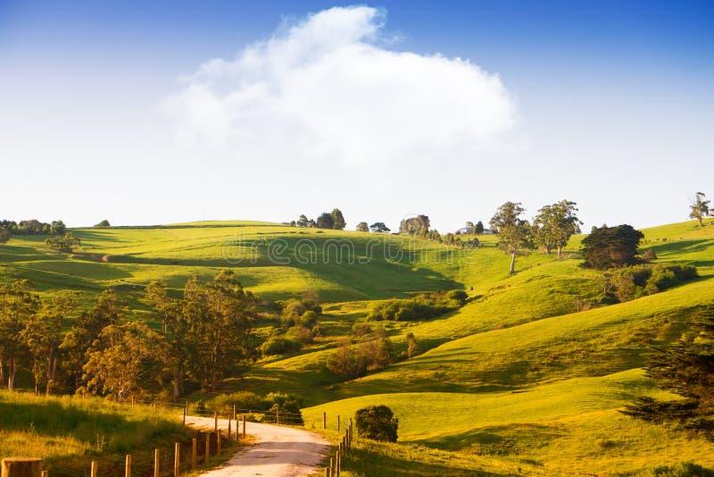 Φυσική αγροτική Αυστραλία στοκ φωτογραφία