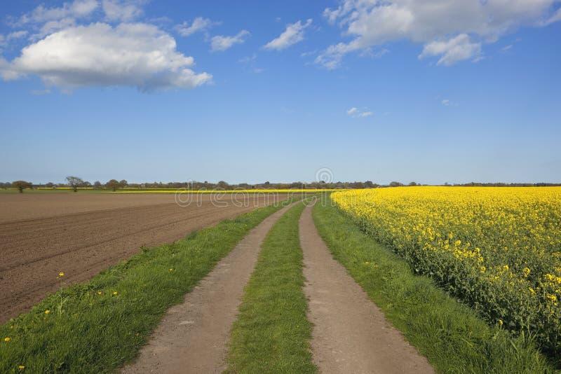 Φυσική αγροτική διαδρομή στοκ φωτογραφίες