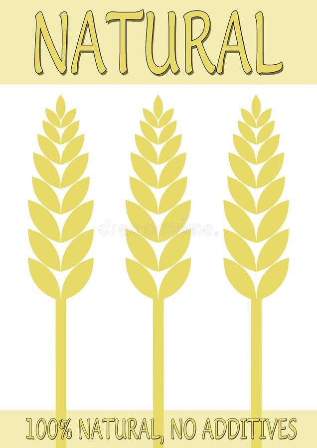 φυσική αφίσα τροφίμων διανυσματική απεικόνιση