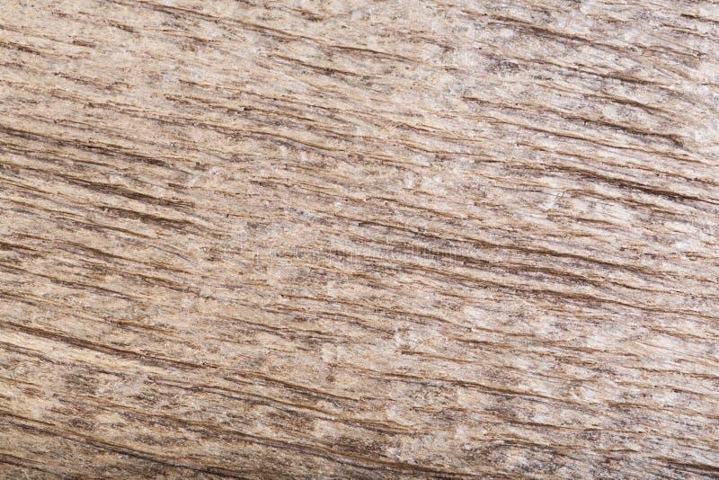 Φυσική γρατσουνισμένη σκοτεινή παλαιά ξύλινη δρύινη σύσταση ελών ως υπόβαθρο στοκ φωτογραφίες με δικαίωμα ελεύθερης χρήσης