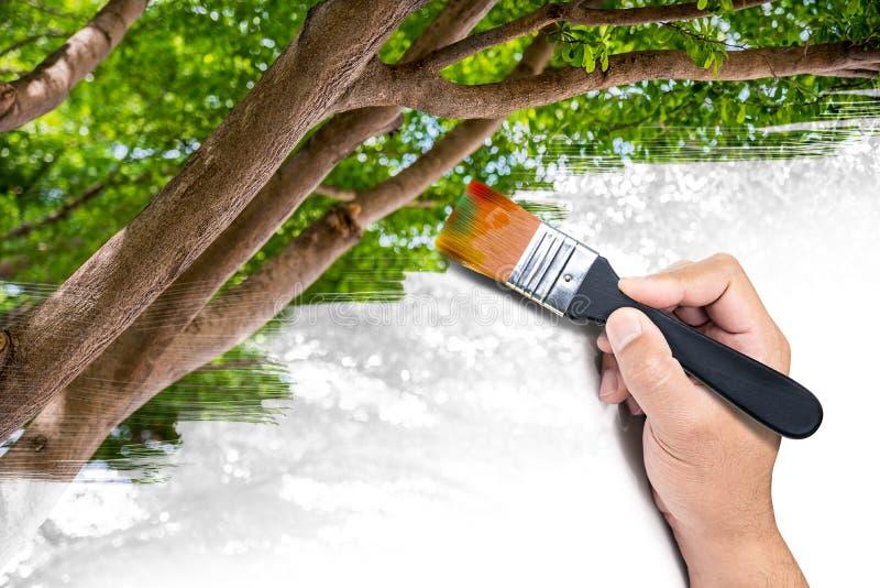 Φυσική εικόνα ζωγραφικής στοκ εικόνες. εικόνα από φύλλο - 55529662