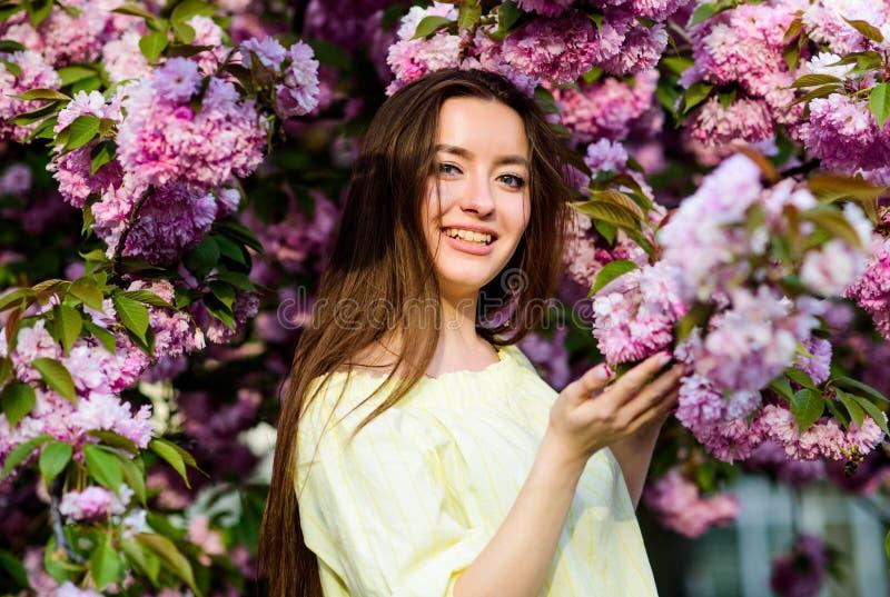 Φυσική θερινή ομορφιά μυρωδιά ανθών, αλλεργία κορίτσι στο λουλούδι κερασιών Άνθιση δέντρων Sakura Skincare spa r στοκ εικόνες