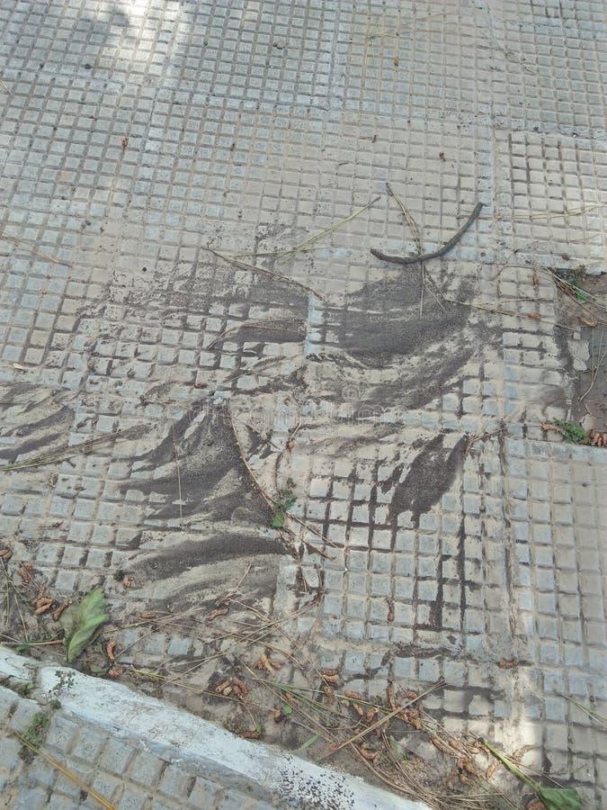 Φυσική λάσπη στοκ φωτογραφία με δικαίωμα ελεύθερης χρήσης