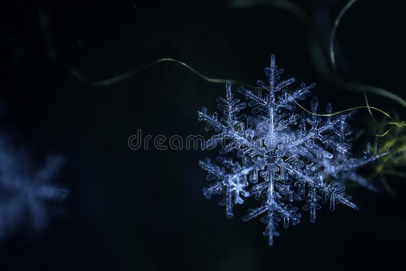Φυσική snowflake κινηματογράφηση σε πρώτο πλάνο Χειμώνας, κρύο Χριστούγεννα στοκ εικόνες με δικαίωμα ελεύθερης χρήσης