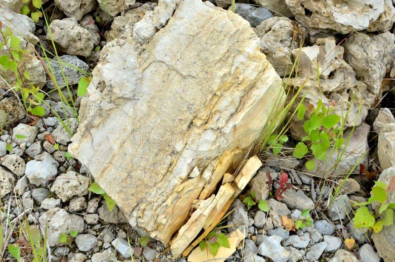 Φυσικός δολομίτης πετρών στον ασβεστόλιθο open-pit στοκ εικόνες