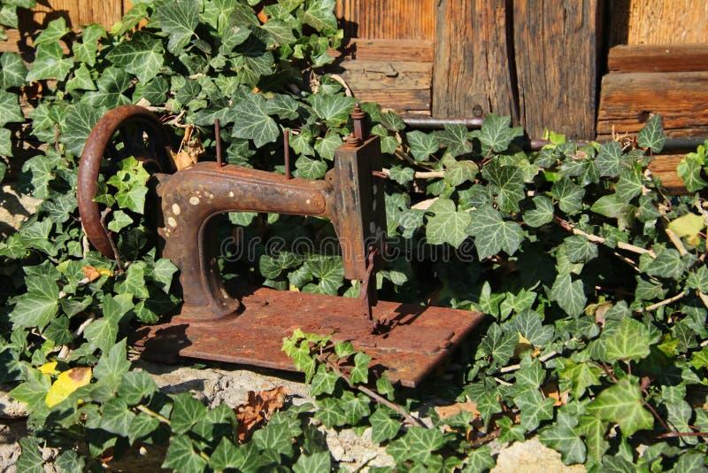 Φυσικός η φωτογραφία της σκουριασμένης φλούδας μιας παλαιάς χειρωνακτικής ράβοντας μηχανής ανάμεσα στην πρασινάδα του παλαιού κήπ στοκ εικόνες