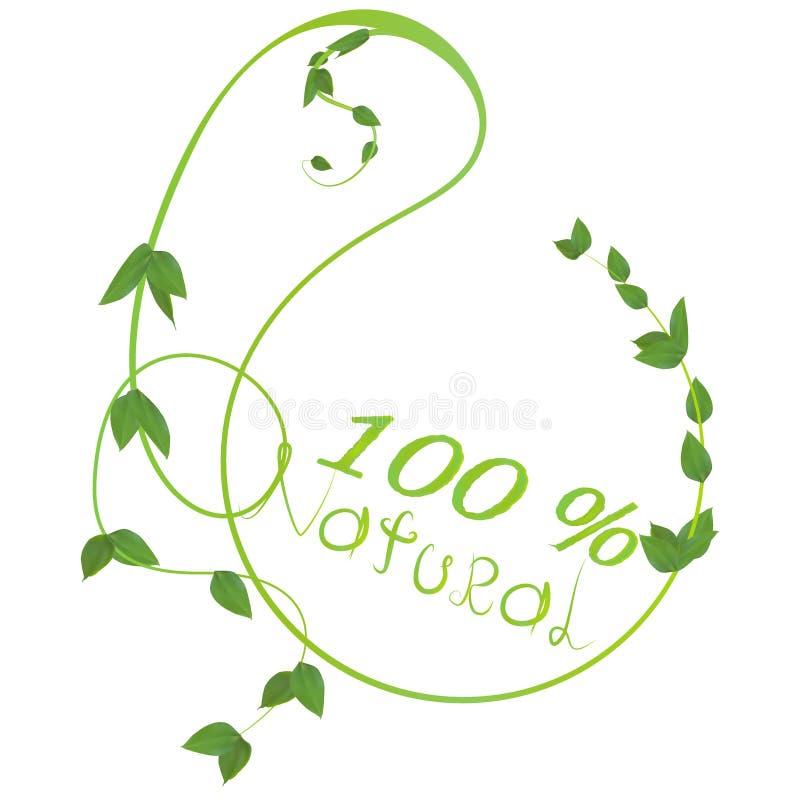 Φυσικός με πράσινο βγάζει φύλλα το λογότυπο ελεύθερη απεικόνιση δικαιώματος