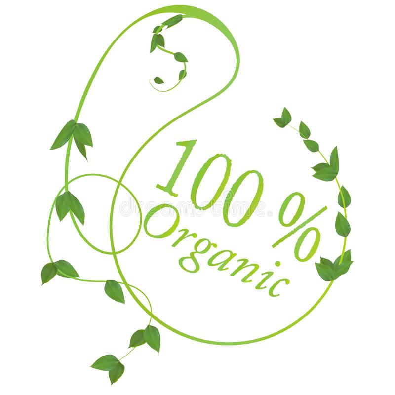 Φυσικός με πράσινο βγάζει φύλλα το λογότυπο απεικόνιση αποθεμάτων