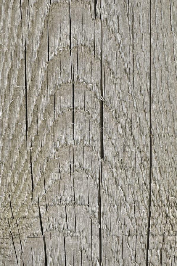 Φυσικός ξεπερασμένος γκρίζος ξύλινος πίνακας σεπιών της Tan Taupe, ραγισμένο τραχύ περικοπών ξύλινο υπόβαθρο ξυλείας σύστασης μεγ στοκ φωτογραφία με δικαίωμα ελεύθερης χρήσης