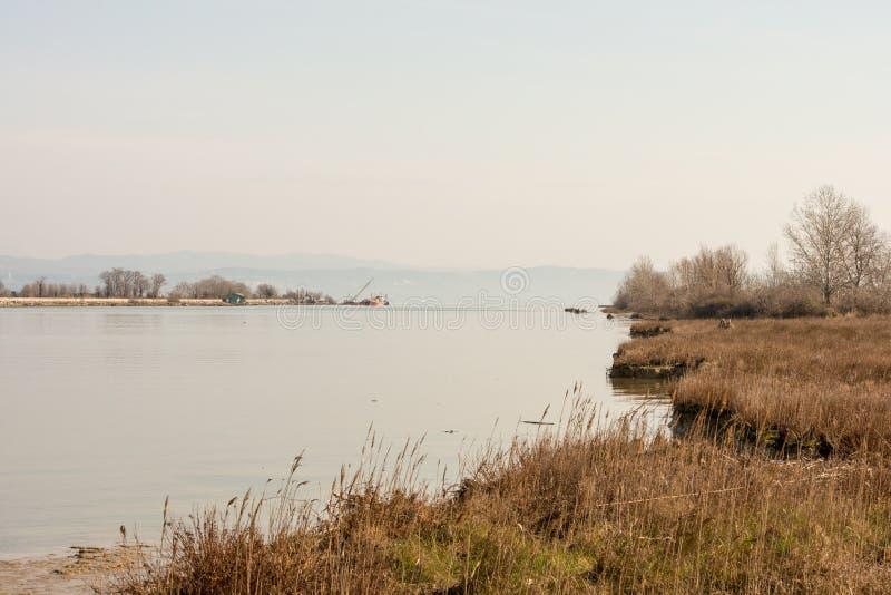 Φυσικός υγρότοπος landsape της επιφύλαξης φύσης των εκβολών ποταμού Isonzo στοκ εικόνες με δικαίωμα ελεύθερης χρήσης