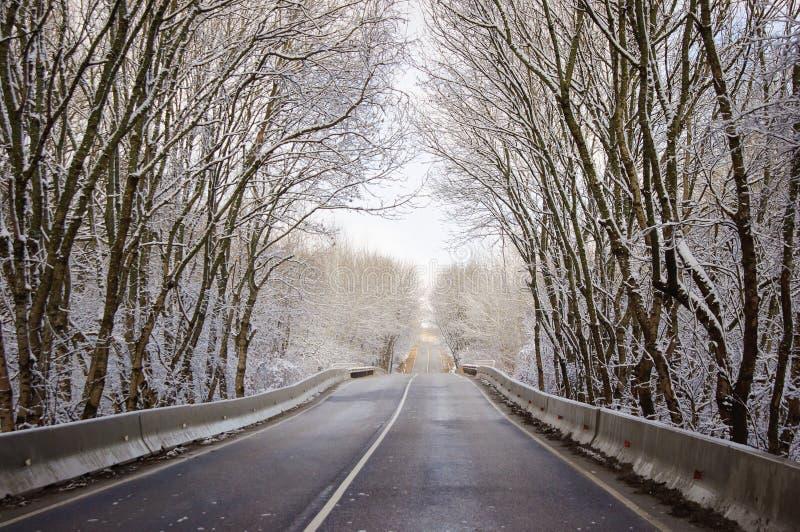 Φυσικός χειμερινός δρόμος μέσω του παγωμένου δάσους στοκ εικόνα