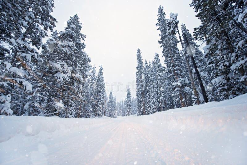 Φυσικός χειμερινός δρόμος στοκ εικόνες